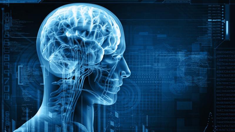 تفعيل مركز المتعة في الدماغ يحفز نظام المناعة على العمل بنشاط