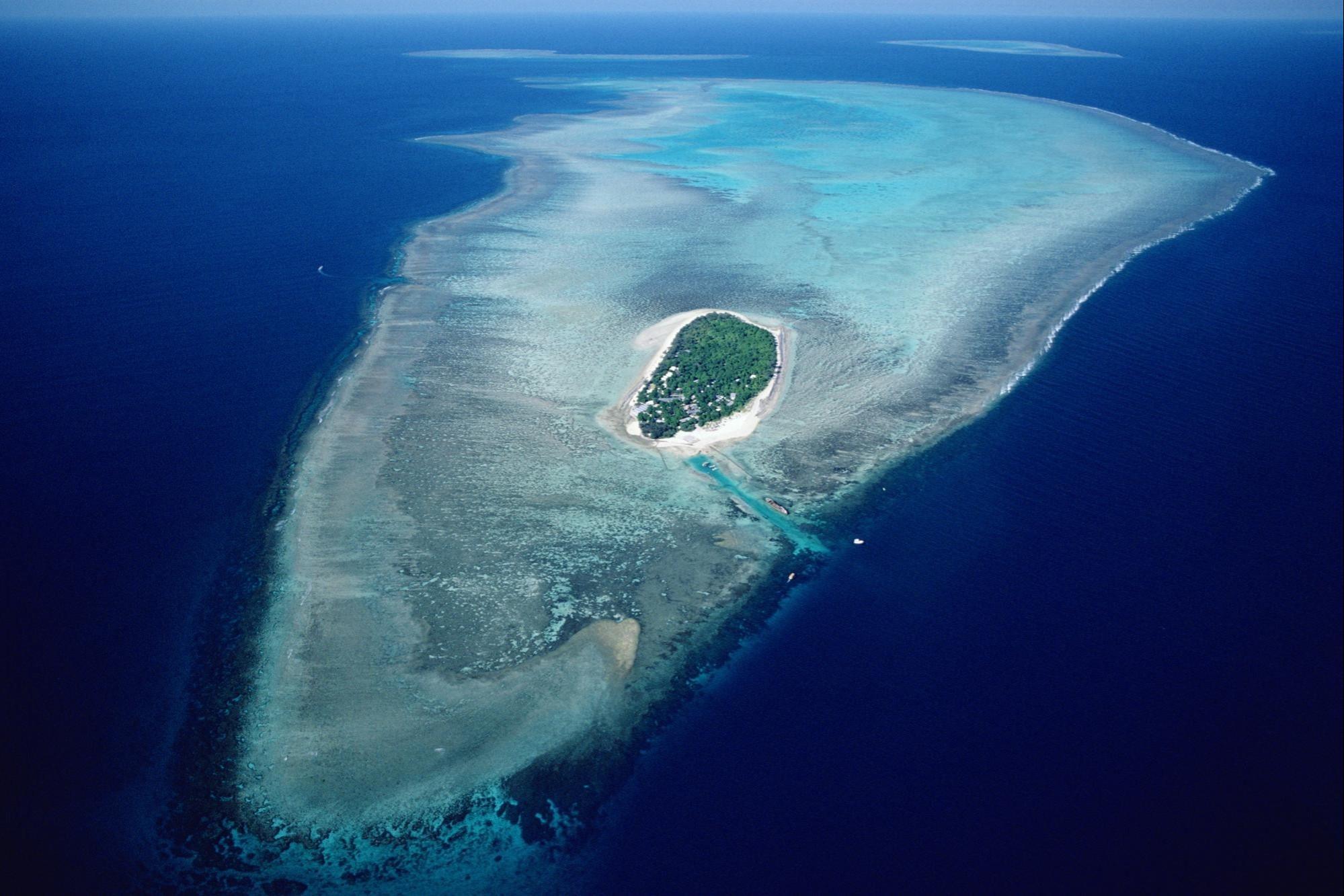جزيرة الحاجز المرجاني